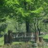 栃木市にある出流ふれあいの森キャンプ場の詳細まとめ
