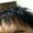 髪をカットしてきた in Rada Hair